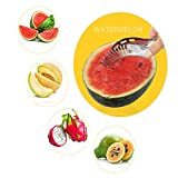 Creative Premium Stainless Steel Watermelon Slicer Made Watermelon to Slice easily Kitchen Knives & Cutlery Accessories (Silver)