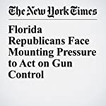 Florida Republicans Face Mounting Pressure to Act on Gun Control | Alexander Burns