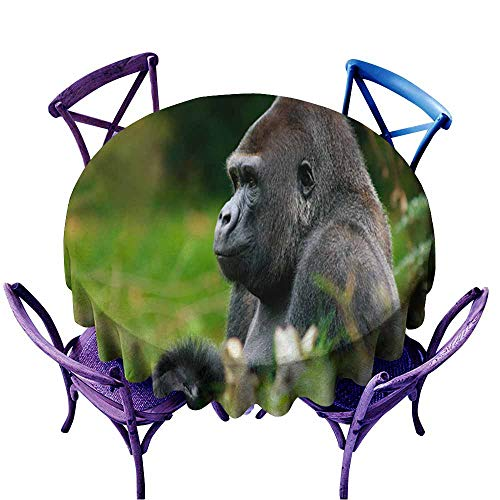 Acelik Round Tablecloth,Big Male Gorilla,Table Cover for Kitchen Dinning Tabletop Decoratio,67 INCH ()