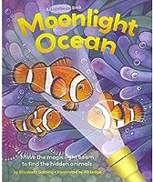 Moonlight Ocean (Lightbeam