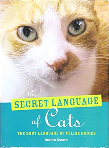 Book The Secret Language of Cats - The Body Language of Feline Bodies