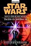 Star Wars: Das Erbe der Jedi-Ritter 14, Wege des Schicksals