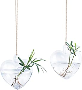 Kingbuy 2 Pack Glass Hanging Vase Planter Terrarium Bud Flower Container for Home Decoration Green Plants Wedding (Heart Shape)