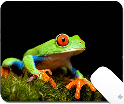 Luxlady Gaming Mousepad red eyed tree frog closeup on black sitting on natural moss ready to jump Agalychnis callidryas 9.25in X 7.25in IMAGE: (Moss Mouse)