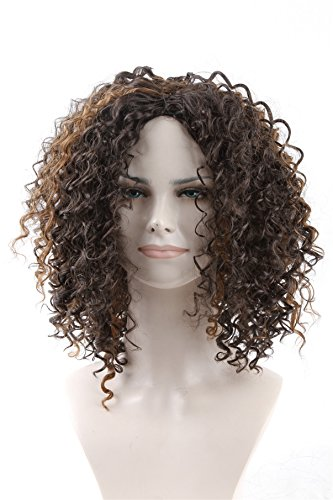 Price comparison product image Futuretrend Kinky Curly Afro Wig Cheep Female Wig Brown Kinky Curly Short Wigs for Black Women Heat Resistant African Hair Wigs (brown)