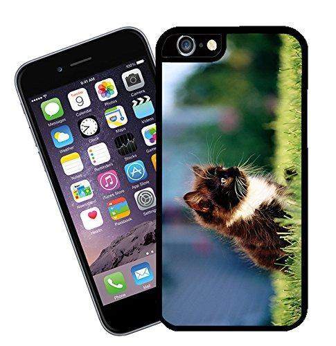 Gatto 033 - questa copertura si adatta Apple modello iPhone 6s (non più di 6s) - di idee regalo di Eclipse