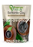Indian Healing Bentonite Detox Clay - 16 oz 100% Natural Powder Face Mask Reduces Acne - Aztec Organic Deep Pore Cleansing - All Natural for Skin & Hair Removes Toxins Premium Nature