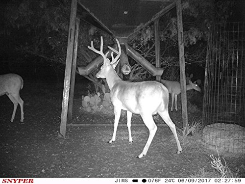 The General 3G Game Camera by Snyper Hunting Products (12MP, Viewing LCD, Connected by AT&T) by Snyper Hunting Products (Image #4)