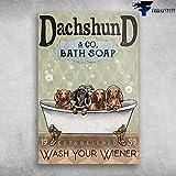Robina Fancy Some Cute Dachshund in Bathtub Bath