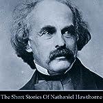 Nathaniel Hawthorne: The Short Stories   Nathaniel Hawthorne