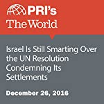 Israel Is Still Smarting Over the UN Resolution Condemning Its Settlements | David Leveille