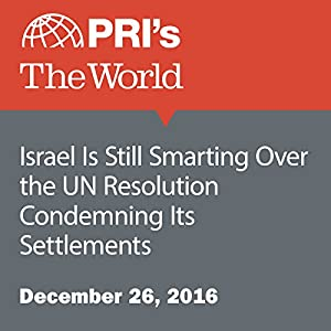 Israel Is Still Smarting Over the UN Resolution Condemning Its Settlements