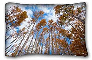 Custom Cotton & Polyester Soft Nature Custom Cotton & Polyester Soft Rectangle Pillow Case Cover 20x30 inches (One Side) suitable for Full-bed