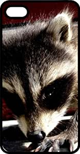 MMZ DIY PHONE CASEBaby Raccoon Black Plastic Case for Apple ipod touch 4