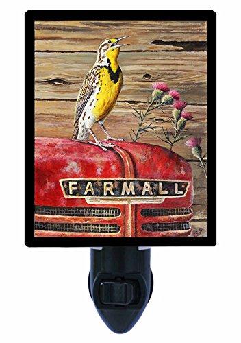 Farmall Led Lights