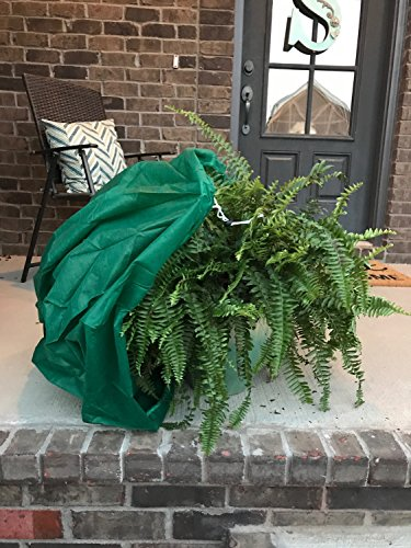 - Frost Armor Bag (2) bags (Frost Protection for Plants)