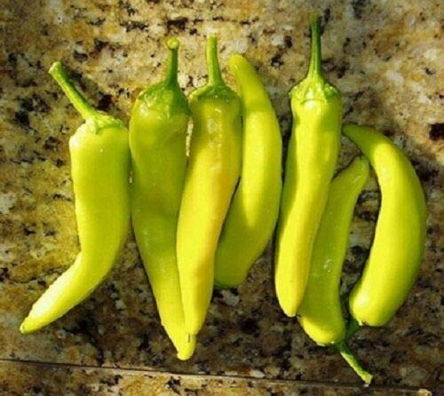(Pepper, Hungarian Yellow Wax Heirloom Hot Pepper Fresh Non GMO 50 Seeds)