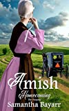 Amish Homecoming: The Proposal: Amish Christian