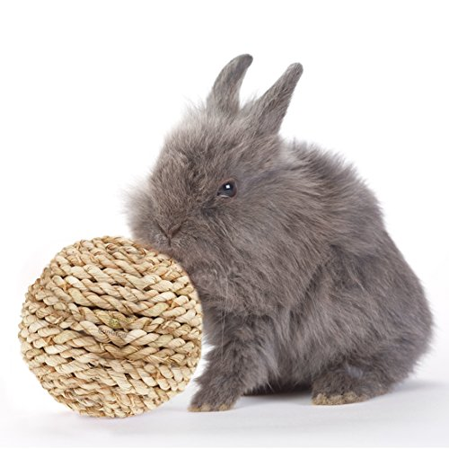 Rope Ball makes Rabbit's Teeth 5X Stronger, Healthier, Shinier – Natural flavored ball by SunGrow is an edible fun chew toy with great source of fiber