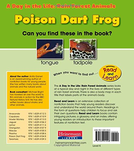 Review Poison Dart Frog (A Day in the Life: Rain Forest Animals)
