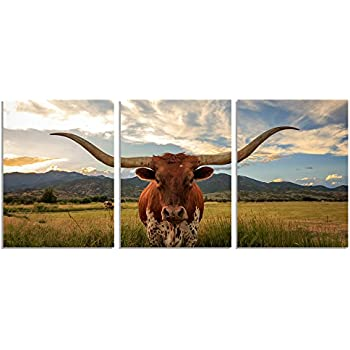 GEVES Texas Longhorn Wall Art Canvas Painting for Living Room Prairie Paintings Print Home Decor Stretched and Framed Ready to Hang