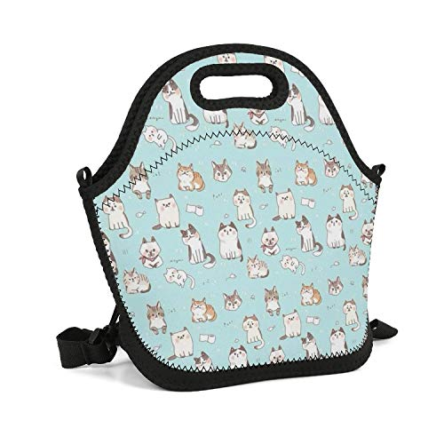 (SHIWERJHC Pet Cat Ragdoll Cat Neoprene Lunch Tote Storage Insulated Thermal Reusable Lunch Bag Box for Women Men Child School Work Outside)