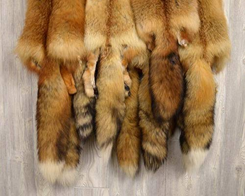 """Tanned Red Fox Winter """"Heavy Fur"""" Western Extra Large Premo (rfhwPremo) by DakotaLine (Image #2)"""