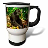 3dRose Danita Delimont - Primates - Indonesia, Sulawesi. Crested black macaque relaxing in rainforest. - 14oz Stainless Steel Travel Mug (tm_257190_1)