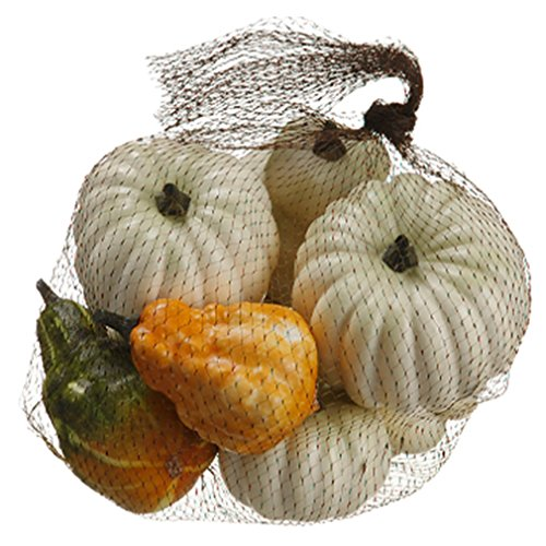 6''Hx9''W Artificial Bagged Assorted Pumpkin & Gourd -Cream (pack of 6) by SilksAreForever