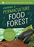 Growing a Permaculture Food Forest : How to Create a Garden Ecosystem You Only Plant Once But Can Harvest for Years (Backyard Renaissance)