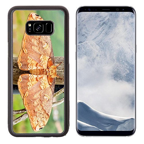 Liili Premium Samsung Galaxy S8 Plus Aluminum Backplate Bumper Snap Case Moth Night Butterfly In Nationalpark In Thailand Image Id 19157155