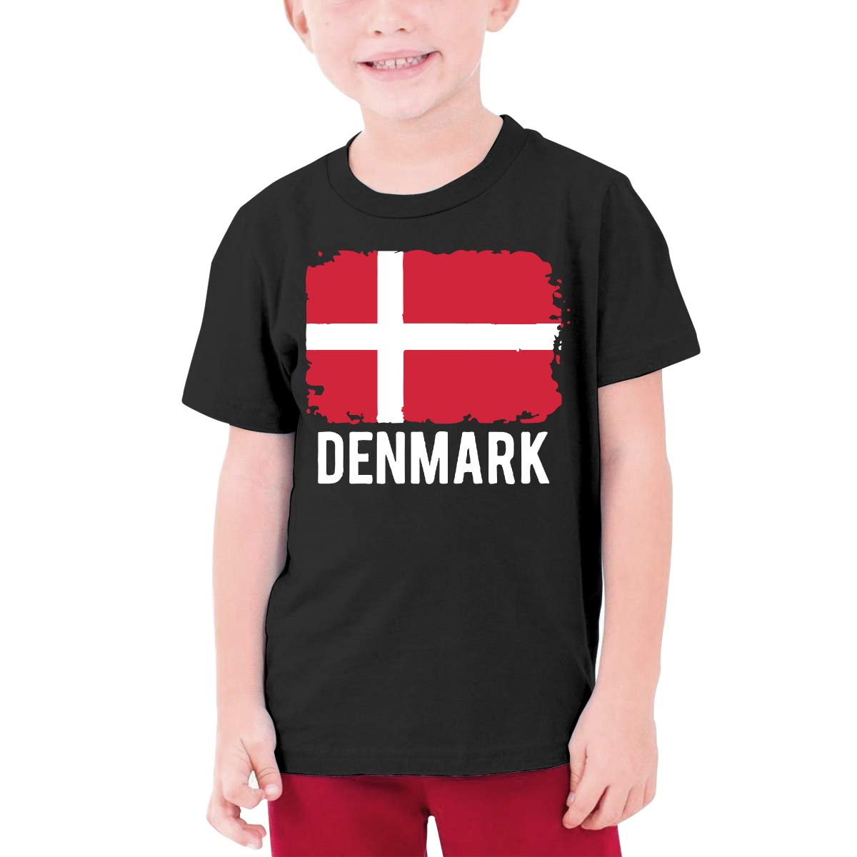 DH4/_8J Denmark Flag Children Girls Short Sleeve T Shirt