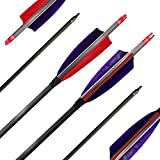 ZHANYI 6 Pack Target Hunting Archery Carbon Arrows 600 Spine 28 Inch with Real Feather Fletching for Compound Recurve Bows
