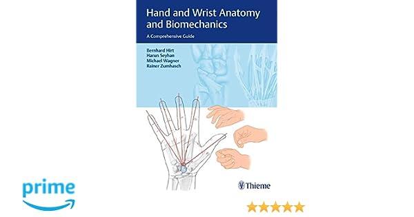 Hand and Wrist Anatomy and Biomechanics: A Comprehensive Guide ...