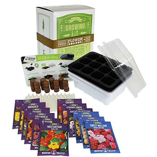 (Annual Flower Garden Seed Starter Kit   Deluxe   12 Varieties of Flower Seeds for Planting: Sweet William, Strawflower, Bachelors Buttons, Cosmos, Zinnia, Alyssum, Zinnia &)