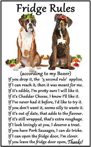 hiusan Boxer Dog Gift - Fridge Rules Funny Fridge Stickers Warning Stickers Peel and Stick Kitchen Home Decor 6
