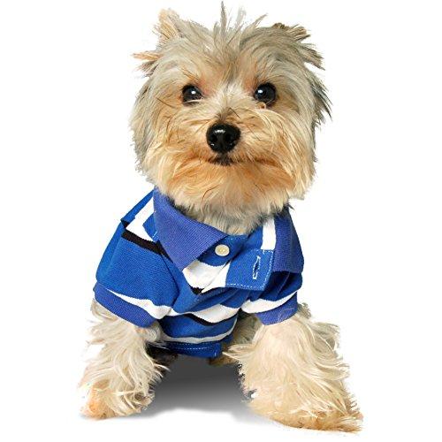 Stinky G College Blue Stripe Dog Polo Shirt #08 - XS