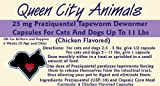 Queen City Animals Chicken Flavored Praziquantel Tapeworm Wormer Capsules For Little Dogs And Cats 2.5 – 11 Pounds. Six (6) Capsules. The Same Active Ingredient As The Major National Brands!, My Pet Supplies