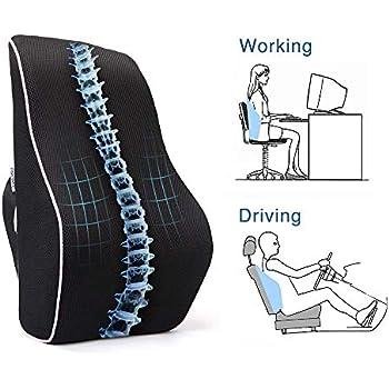 PROMIC Memory Foam Lumbar Support Back Cushion, Ergonomic Lumbar Pillow Relieves Sciatica Pain - 3D Ventilative Mesh Lumbar Support Pillow for Office Desk ...