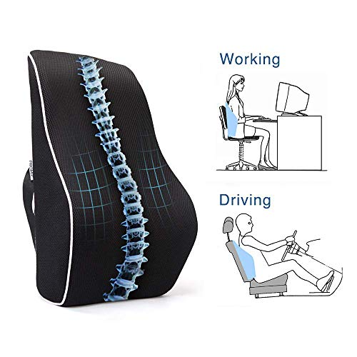 - PROMIC Memory Foam Lumbar Support Back Cushion, Ergonomic Lumbar Pillow Relieves Sciatica Pain - 3D Ventilative Mesh Lumbar Support Pillow for Office Desk Chair Car Seat Couch and Sofa (w/Carry Bag)
