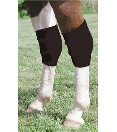 Neoprene Hock Sweat Boots Leg Protection Care Horse Barrel Racing Reining Training