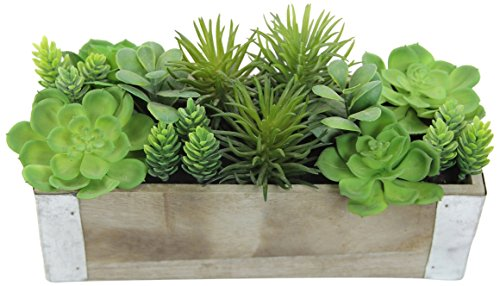 - Admired By Nature Artificial Potted Succulents Plants Wood Planter, Green
