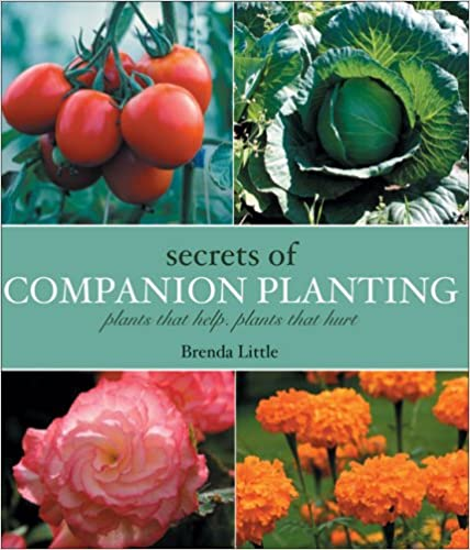 Download online Secrets of Companion Planting: Plants That Help, Plants That Hurt PDF, azw (Kindle)