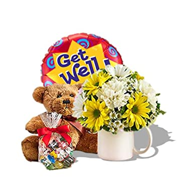 Amazon Get Well Wishes With Bundle Fresh Flowers And Plants