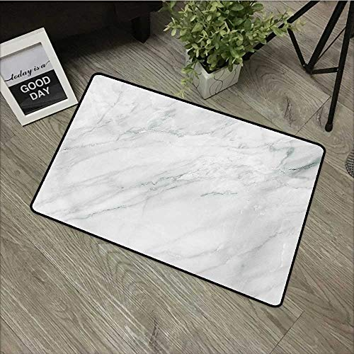 Living Room Door mat W24 x L35 INCH Marble,Stained Marbled Background Image Abstract Textures Monochromatic Design Print,White Pale Grey Easy to Clean, Easy to fold,Non-Slip Door Mat - Oval Table Textures
