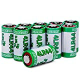 Health & Personal Care : LiCB 10 Pack 4LR44 6V Battery PX28A 476A A544 K28A L1325 Battery 6V Alkaline Batteries for Dog Collars