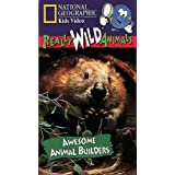 Ng Kids:Awesome Animal Builder