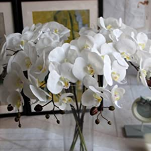 Auntwhale 7 Heads of Colorful Simulation Flowers Phalaenopsis Moth Orchid Artificial Flowers 80