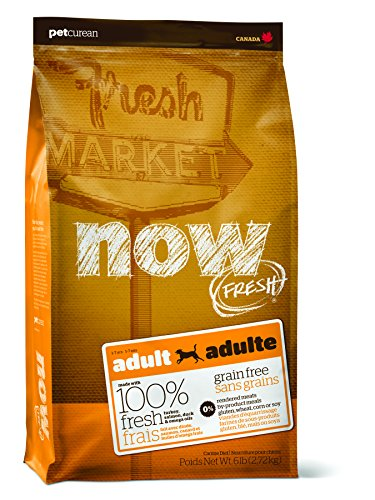 NOW! Petcurean Fresh Grain Free Adult Dog Food, 6-Pound Bag