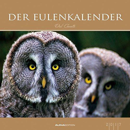 Der Eulenkalender 2017 - Eulen - Bildkalender (33 x 33) - Tierkalender